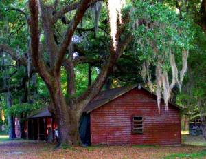 Site of the annual Gullah festival
