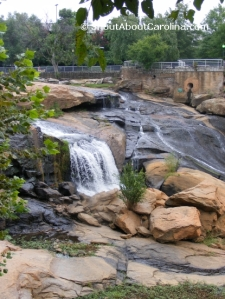 An oasis of relaxation downtown Greenville