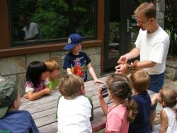 Kids fun camping at Highlands Botanical Gardens