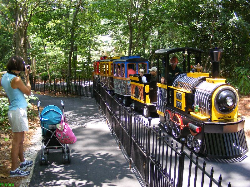 Kids Things To Go In Greenville Sc