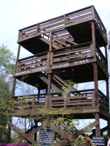 The Bird's Eye Watch Tower