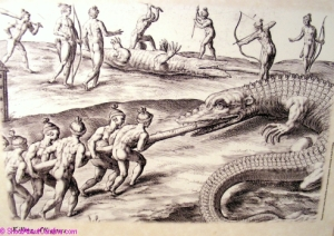 Natives hunting gigantic alligators