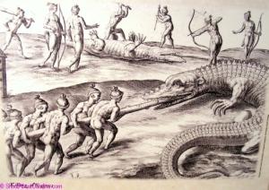 Natives hunting gigantic alligators
