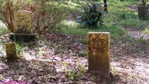 Old graveyard inside Audubon Swamp Garden