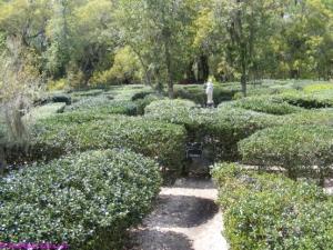Find your way through the Garden Maze