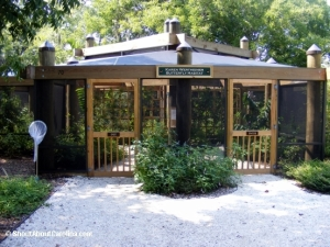 Entrance to the Butterfly exhibit at Coastal Discovery Museum