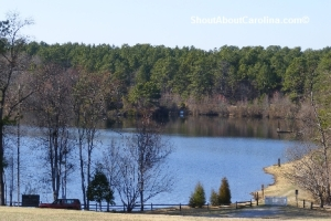 Walk the dog around beautiful lake