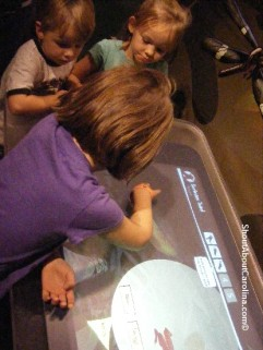 Fantastic frogs hands on video presentation Discovery Place