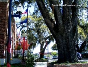 SC Governor Wade Hamptons oak tree