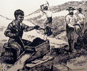 First gold rush in America begins