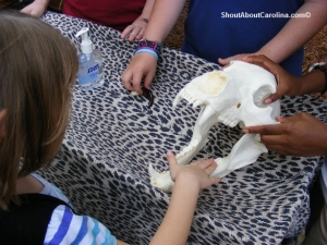 Hands on learning at Riverbanks Zoo special Enrichment Day