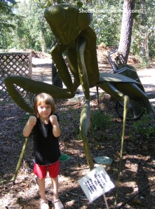Fun and interesting things to do for kids at Riverbanks Garden