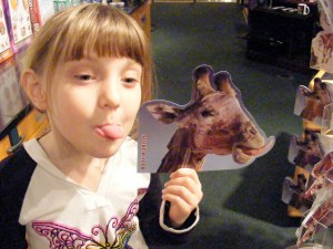 Animal plastinate pictures at the SC State Museum gift shop