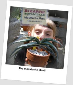 Fun posing with the French mustache cactus plant