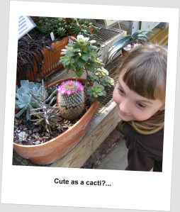 What a cute baby cactus!