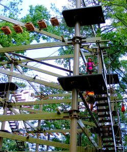 It's a jungle up there! Sky High Safari a must do activity at the zoo